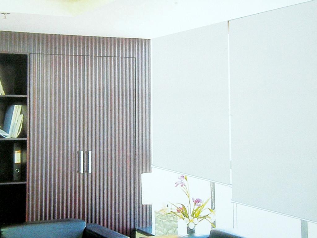 Blackout Room Darkening Fabric White B220ww B220ww Motorized Window Treatments Remote